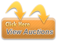 Click to Visit Auction Site